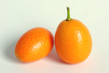 По внешнему виду плоды кумквата напоминают миниатюрный апельсин,