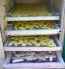 Сушка плодов и овощей включает операции:мойку,сортировку по качеству и размеру,очистку,резку, бланшировку, сушку,выравнивание влаги, удаление металлических примесей