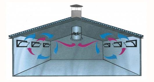 ustrojstvo-ventilyacii-v-kuryatnike