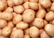 Пищевая ценность картофеля