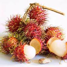 Плоды так же называются рамбутан, округлые или овальные, размером 3—6 см