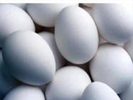 Яйцо состоит из трех основных частей:белка,желтка,и скорлупы