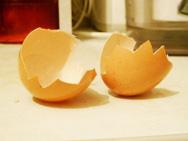 Скорлупа яиц содержит углекислые кальций (93,5%) и магний (1,4%),фосфорнокислые кальций и магний (0,8%) и небольшое количество органических веществ