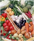 Плотность массы плодов и овощей зависит от химического состава,