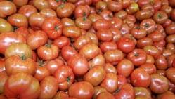 Овощи очищаются от малопитательных или несъедобных частей