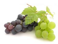 Ягоды винограда большинства сортов хранятся 1,5 – 2 недели