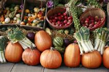 Во время хранения пищевых продуктов протекают различные физические процессы,