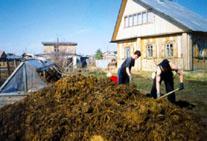 к органическим удобрениям относятся навоз, торф, компост, птичий помет