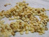 Все семена хранятся разное время, что связано с их биологическими особенностями.