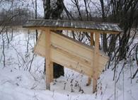 Колодное бортевое пчеловодство