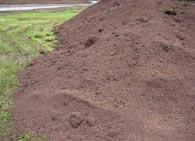 Как измерить ph почвы?