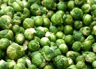 Описание брюссельской капусты