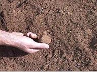 Краткое описание   почв