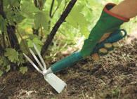 Требования к качеству почвы