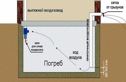 kak-postroit-pogreb-v-dome1