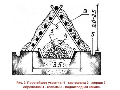 kak-sdelat-zemlyanoj-pogreb-1