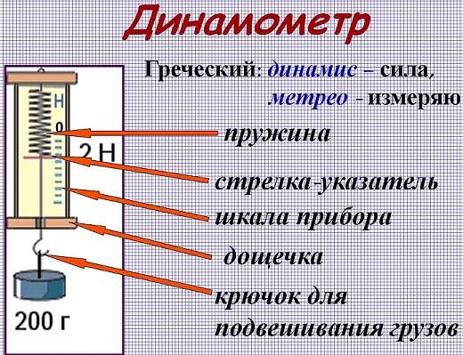 chto-izmeryayut-s-pomoshhyu-dinamometra-1