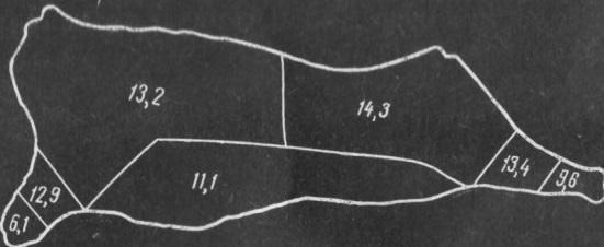 izmenenie-belkovyx-veshhestv-v-pishhevyx-produktax-pri-teplovoj-obrabotke-2